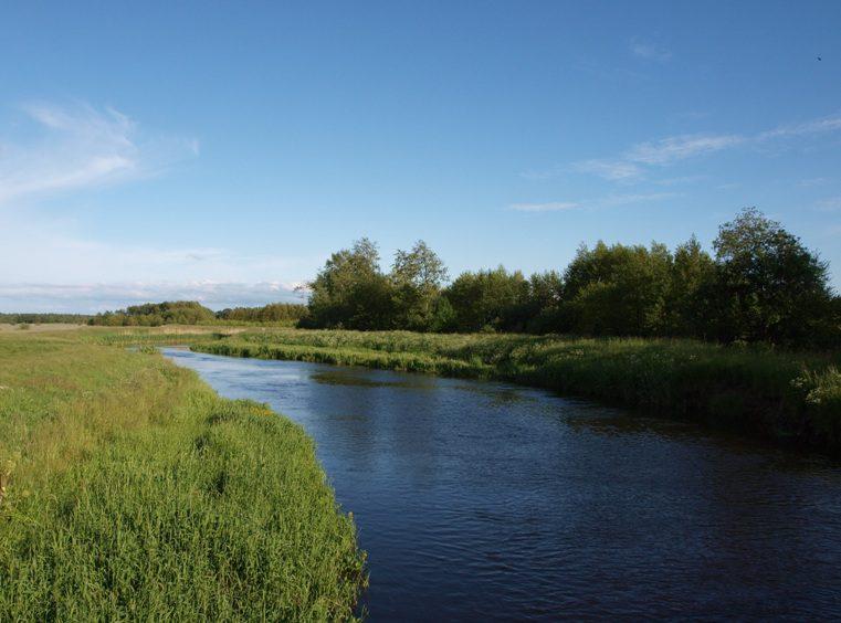 река Леба