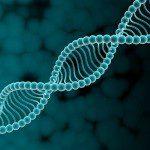 HGNC — Комитет по номенклатуре генов