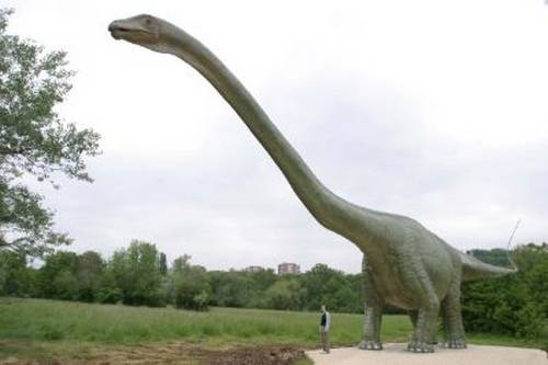 сейсмозавр картинки