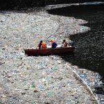 Большое тихоокеанское мусорное пятно: миф или реальность?