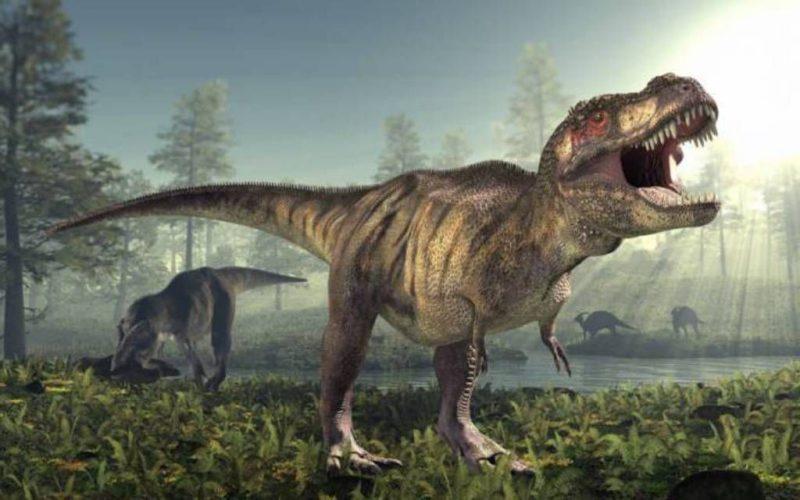 карнозавры