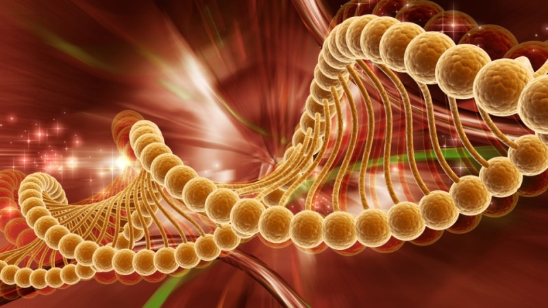Комитет по номенклатуре генов