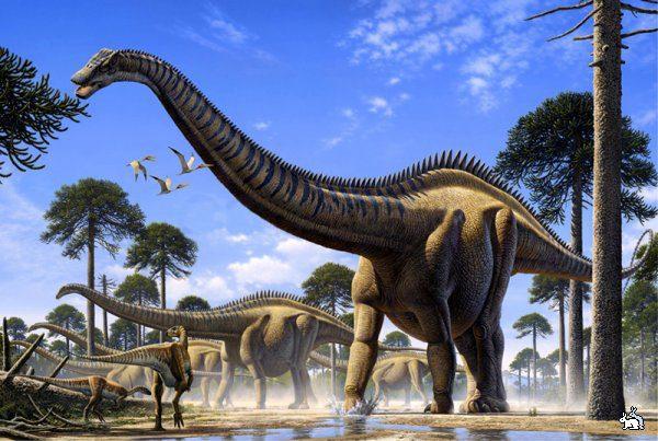 динозавр диплодок фото и описание
