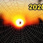 2020 год какого животного по славянскому календарю