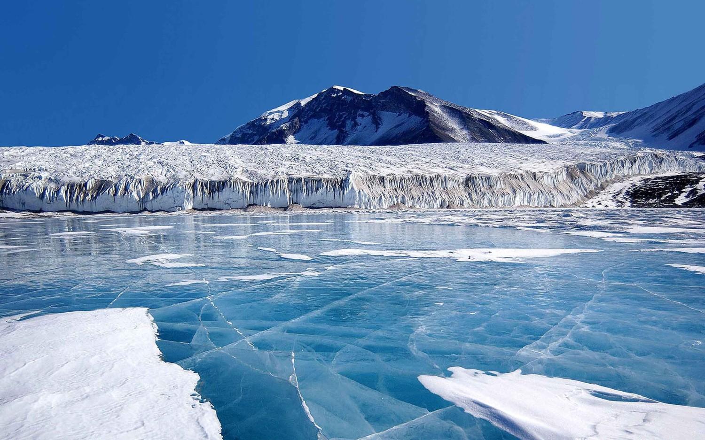 7 интересных фактов об Антарктиде ? Места отдыха